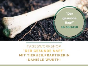 Copy of Wochenendseminar (1)